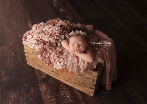 Adelaide based Accredited Professional Photographer Jennifer White Photography Newborn Baby